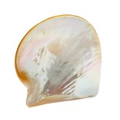 Mother of Pearl Caviar Serving Plate