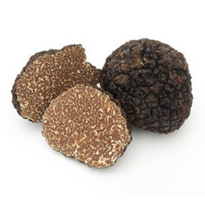 Fresh Black Autumn Truffles